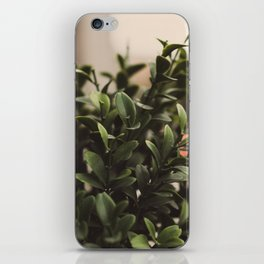 Plant iPhone Skin