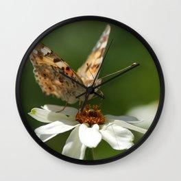 Butterfly macro photography Wall Clock