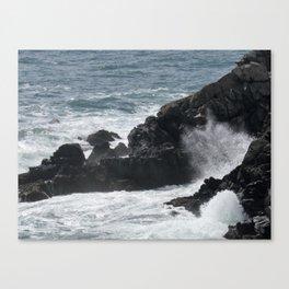 Waves Crashing on the Coast Canvas Print