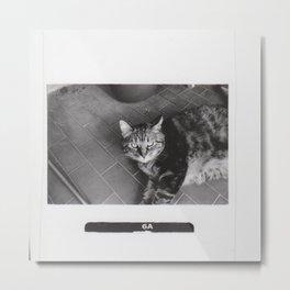 Astrid 3 Metal Print