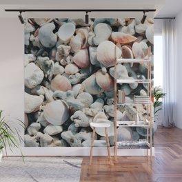 Seashells Wall Mural
