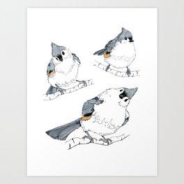 Titmouse Art Print