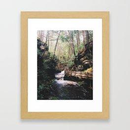 Bushkill Path Framed Art Print