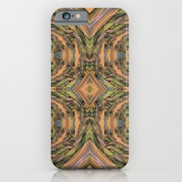Reflections of the Fall iPhone Case