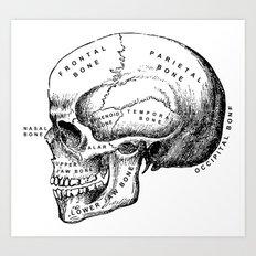 The Medical Patient Art Print