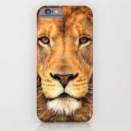 Wild Cat Glare iPhone Case