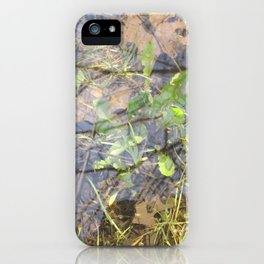 Reflection's Pool iPhone Case