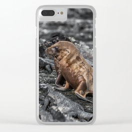 Baby sea lions surrounded by marine iguanas Galapagos Clear iPhone Case