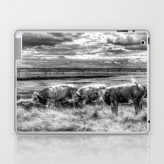 Late Afternoon Cows Laptop & iPad Skin