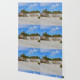 Dunes on Gasparilla II Wallpaper