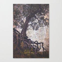 The Tangle Tree Canvas Print