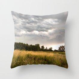 Stormy fields Throw Pillow