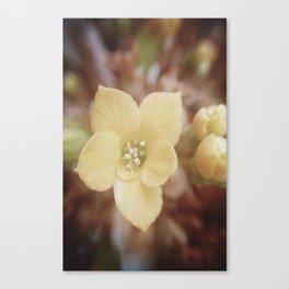 Yellow Dream Canvas Print