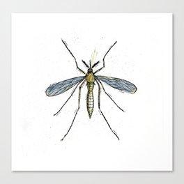 Mosquito Control Canvas Print