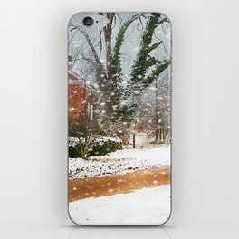 The Winter Cottage iPhone Skin