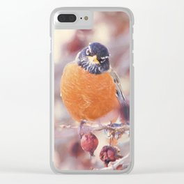 American Robin Gaze Clear iPhone Case