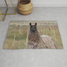 Llama Portrait - 2 Rug