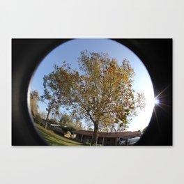 Sunny Trees Canvas Print