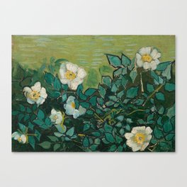 Wild Roses by Vincent van Gogh, 1889 Canvas Print