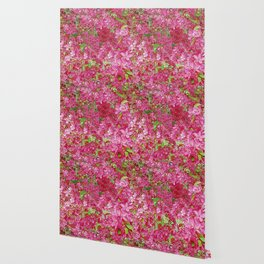 GREEN & FUCHSIA PINK CRABAPPLE FLOWER SPRING ART Wallpaper