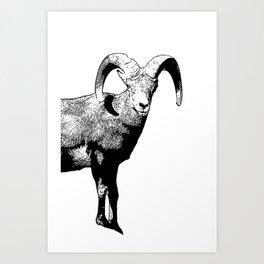 Ram Stamp  Art Print