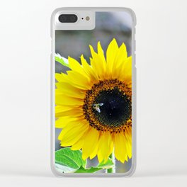 Sunflower with bee Clear iPhone Case