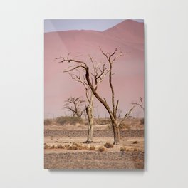 NAMIBIA ... pastel tones I Metal Print