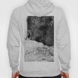 Buffalo Beard Hoody