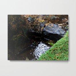 Rocky Stream Metal Print