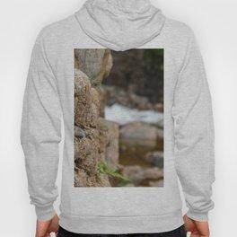 Stone wall river Hoody