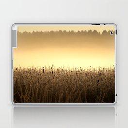 Bed Of Reeds In Golden Hour Laptop & iPad Skin