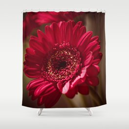 Red Gerbera II Shower Curtain