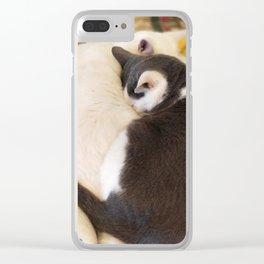 Kitten Love Clear iPhone Case