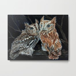 young love on a starry night - screech owls Metal Print