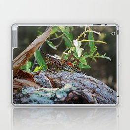 A Lubber in the Slough III Laptop & iPad Skin