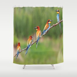 cute bee eaters Shower Curtain