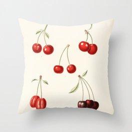 Vintage Cherry Illustration Throw Pillow