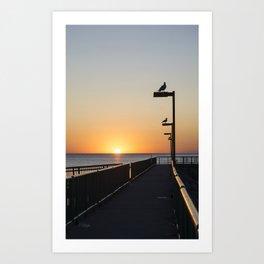Sunrise Seagulls Art Print