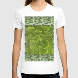COLLAGE GRAY-GREEN  SUCCULENTS  MODERN DESIGN T-shirt