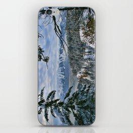 Winter View iPhone Skin