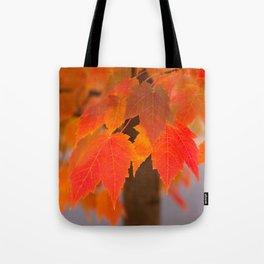 Autumnal Epitome Tote Bag