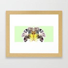Insecte Eventail summer version Framed Art Print