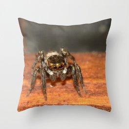 A spider Throw Pillow