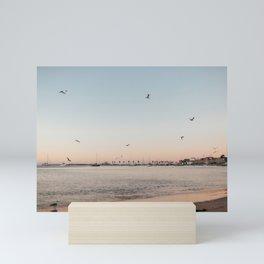 Birds at beach in Cascais, Portugal  Mini Art Print