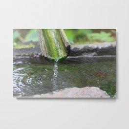 Bamboo Drip Metal Print