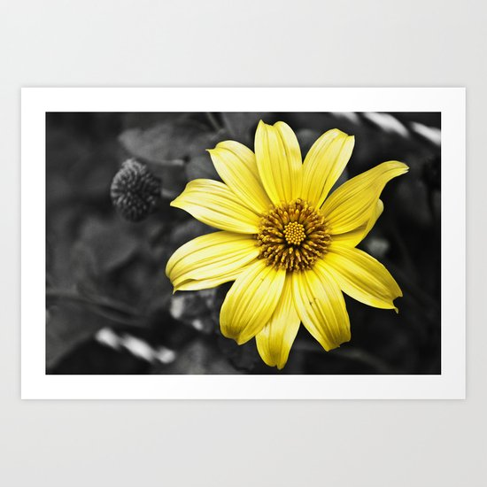 Color my Garden  Yellow Art Print