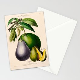 "Avocado from ""Flore d'Amérique"" by Étienne Denisse, 1840s Stationery Cards"