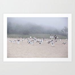 Fog And Friends Art Print