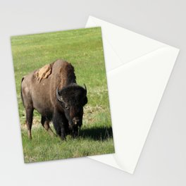 A Big Guy Stationery Cards