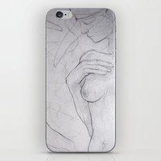 Three Birds iPhone & iPod Skin